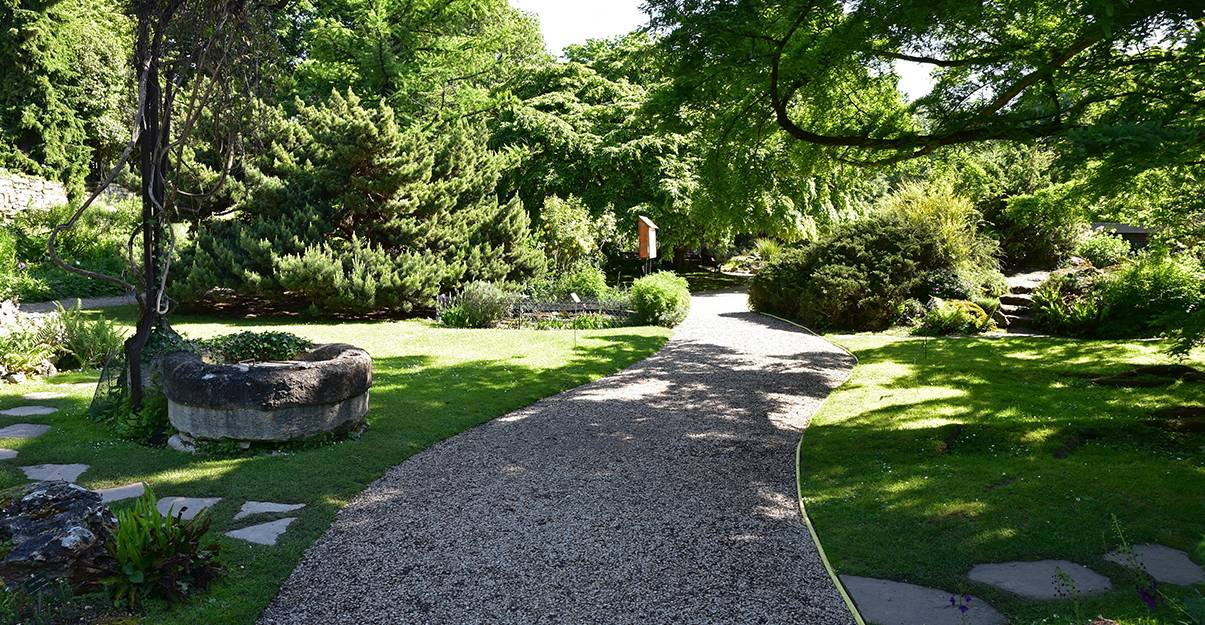 Une belle allée de jardin