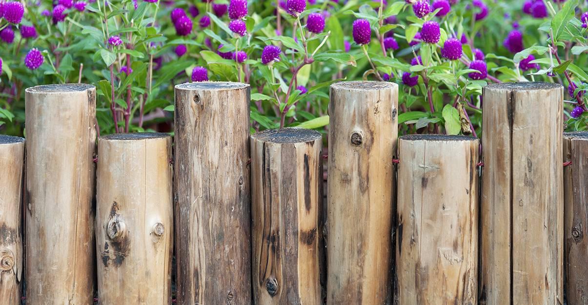 Aménagement de jardin : les bordures