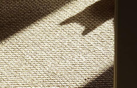 Sol intérieur : le jonc de mer