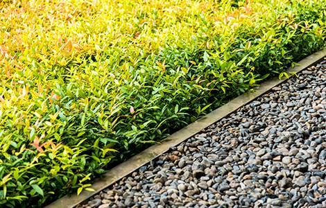 La bordure de jardin en béton