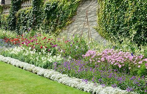 La bordure de jardin végétale