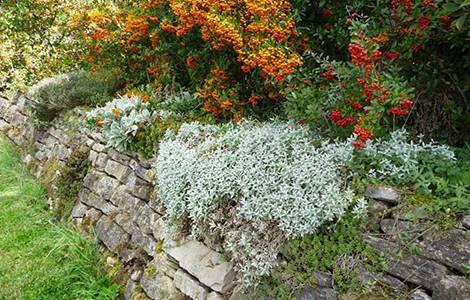 Mur de soutènement en pierres sèches