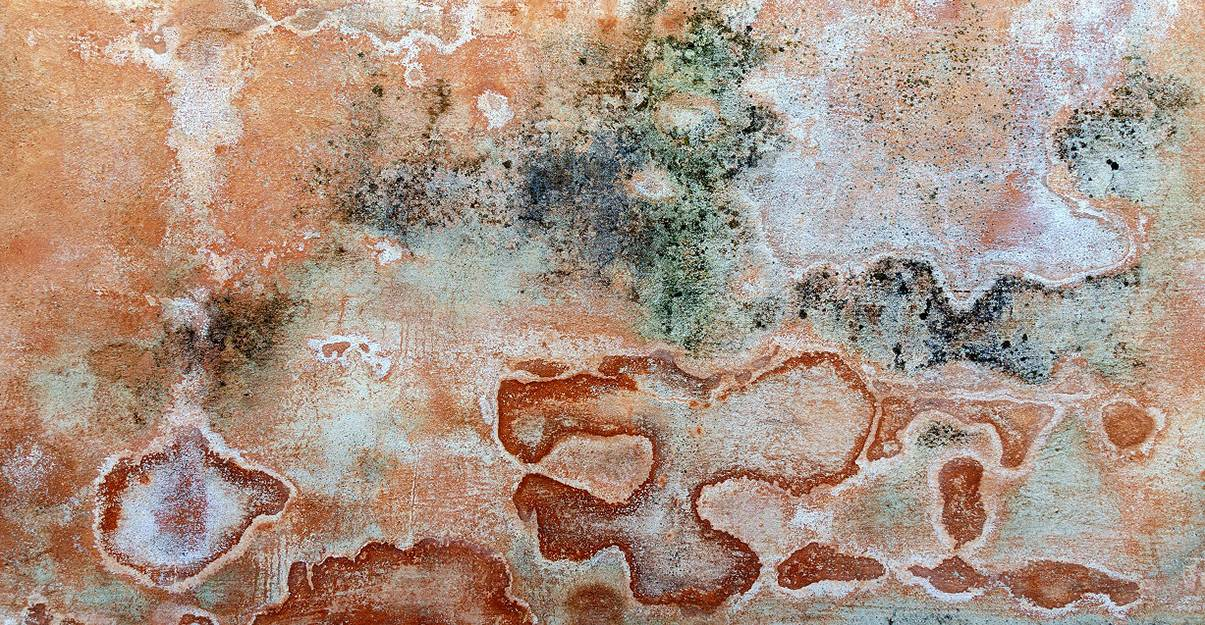 Remontée capillaire: le phénomène d'efflorescence