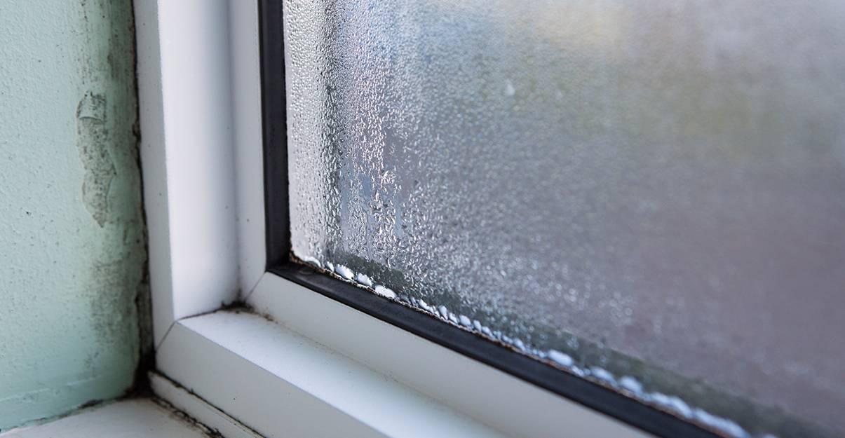 Un défaut d'étanchéité de fenêtre provoque infiltrations et moisissures.