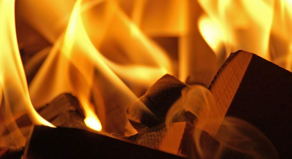 Le bois de chauffage, une énergie d'avenir