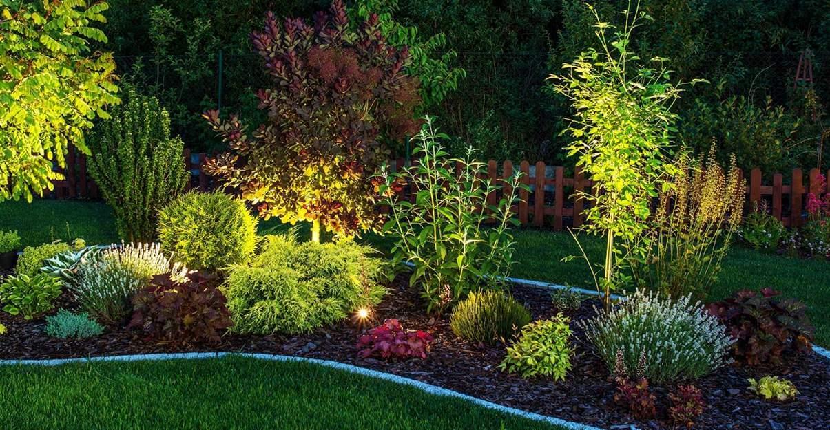 Illuminer un jardin: le retro éclairage