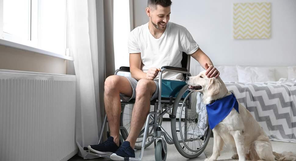 Chambre adaptée handicap - La chambre accessibilité