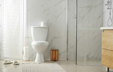 Remplacement de WC