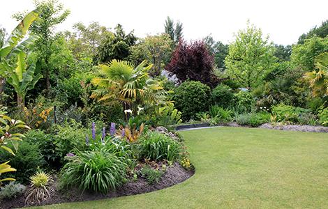 Un jardin exotique
