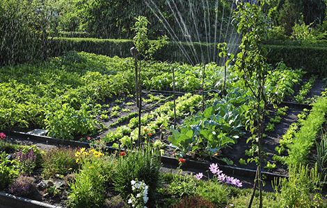 Style de jardin potager
