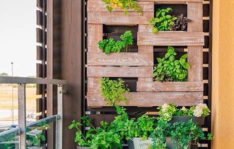 déco balcon : jardin vertical
