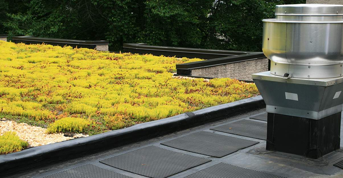Isolation d'un toit végétalisé: une technique bien spécifique