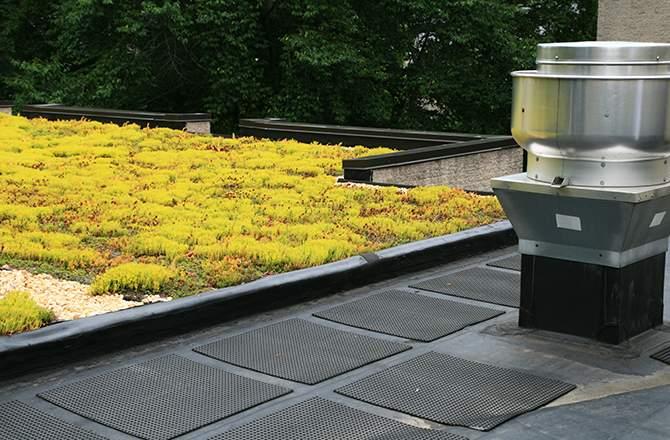 Etapes d'installation d'une toiture végétalisée