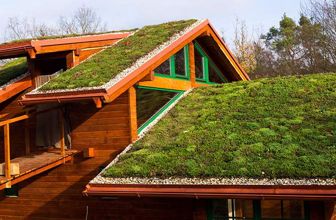 toiture végétalisée, pour les toitures peu inclinées