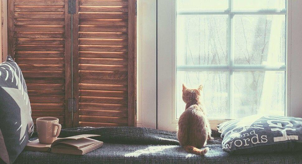 Installer un coin lecture dans votre maison