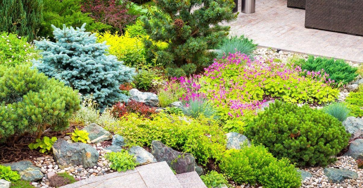 un jardin restanques sans pelouse