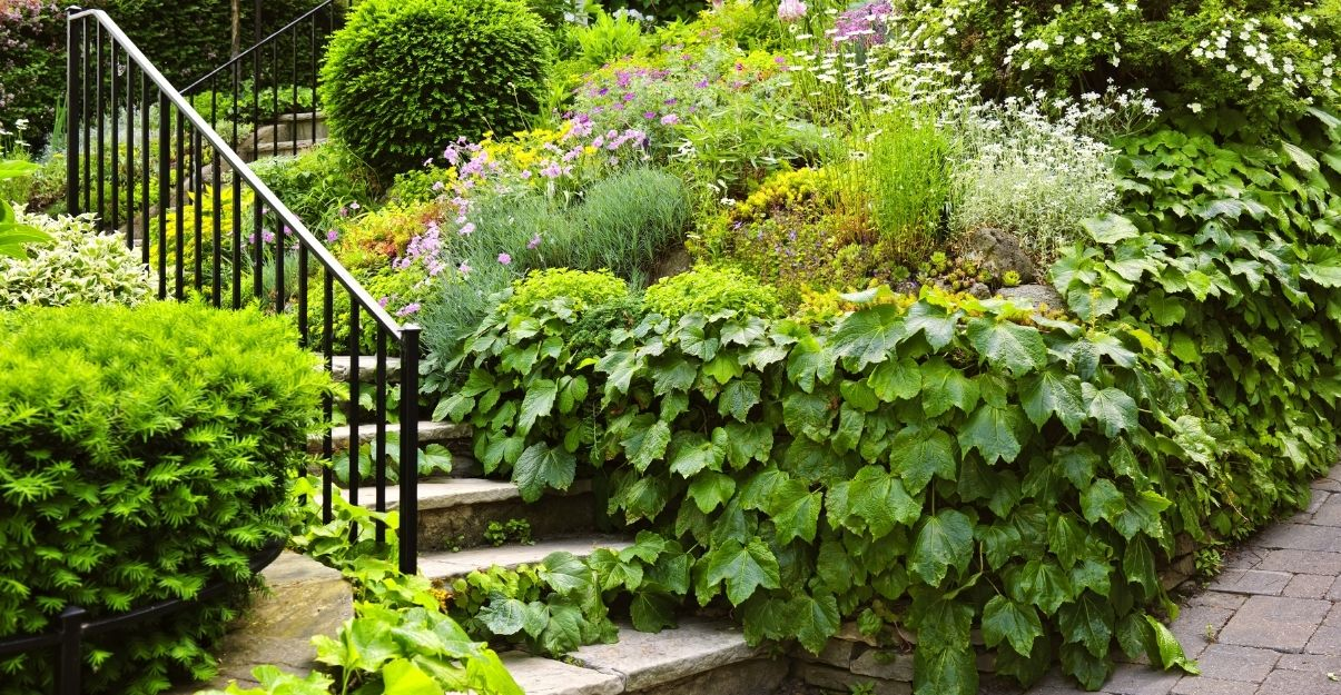 aménager petit jardin en pente