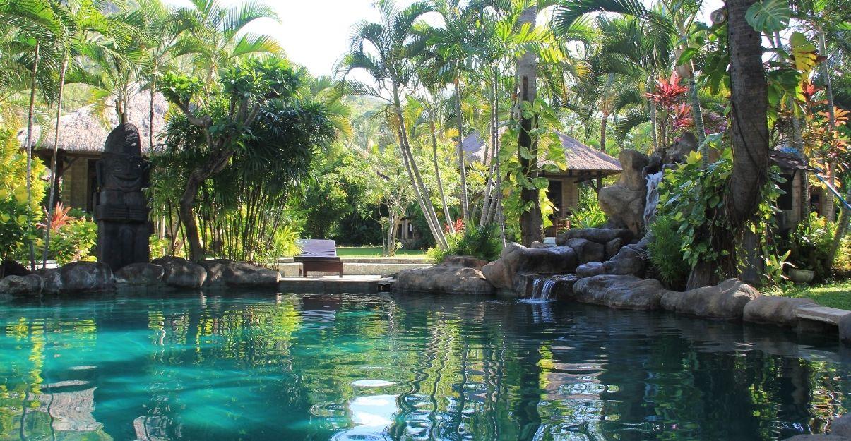 plantes tropicales piscine