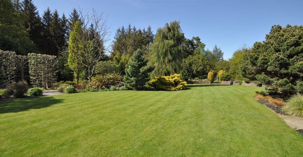 comment faire avec un grand jardin