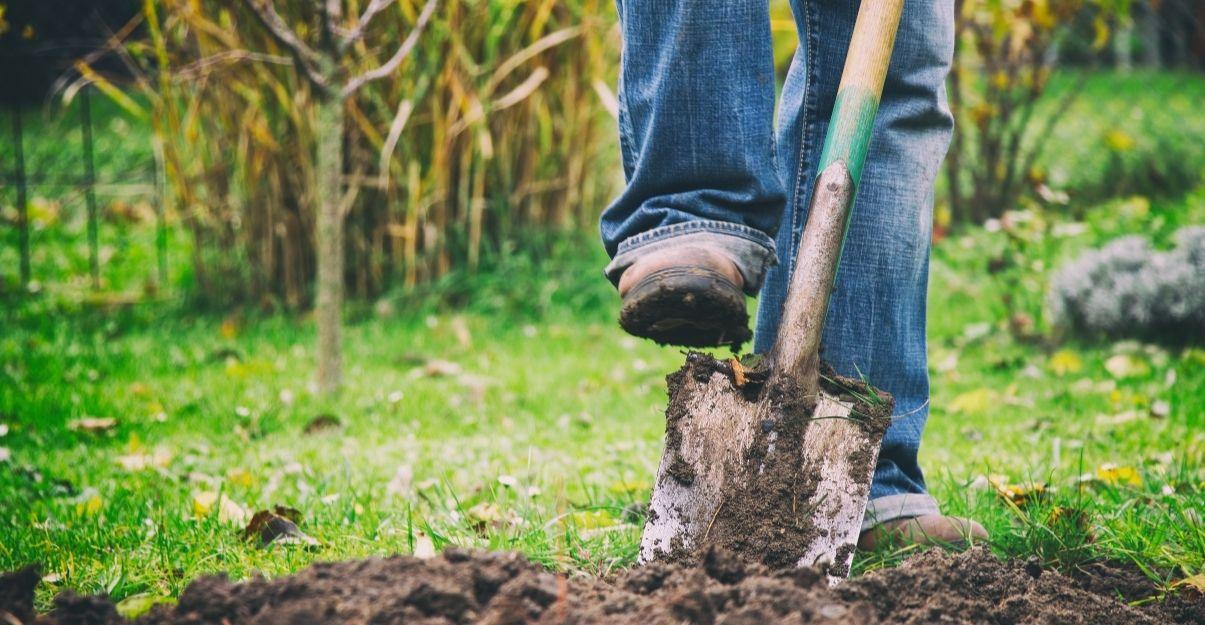 améliorer sol d'un grand jardin