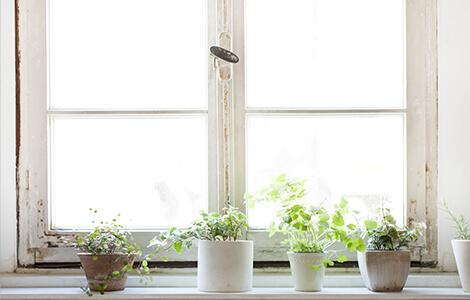 changement de fenêtre pour infiltration d'eau