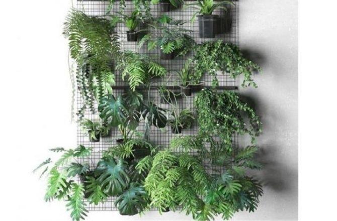 Mur végétal structure métal mur