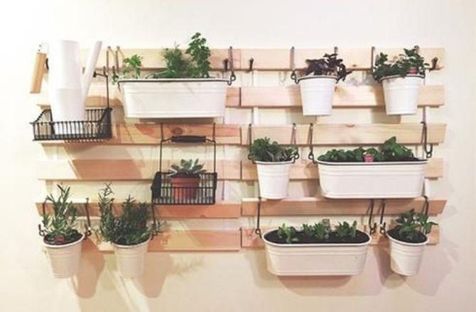 Mur végétal planche de bois