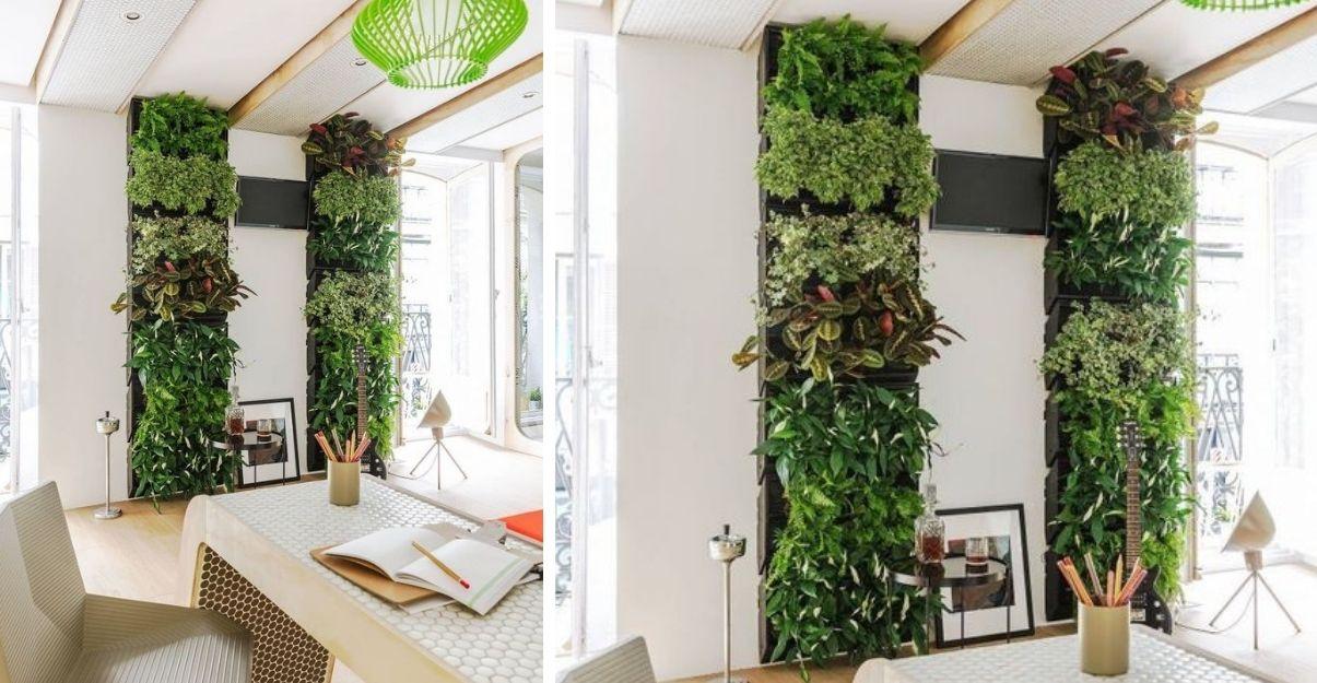 Mur végétalisé salon