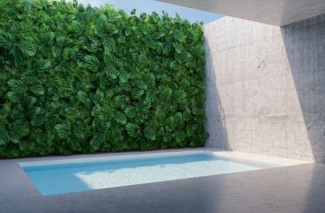 Mur végétal extérieur piscine