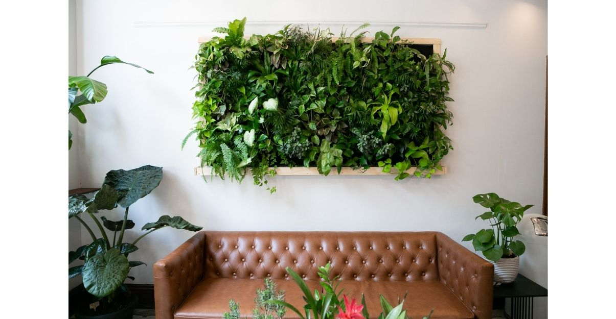 Mur végétalisé dans séjour